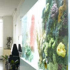 """PLASTOLUX """"keep it modern"""" » Modern Aquariums - City Aquarium & Justin Muir"""