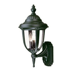 Acclaim Lighting - Outdoor Lighting. Monterey Collection Wall-Mount 3-Light Outdoor Matte Black Lig - Shop for Lighting & Fans at The Home Depot. The Monterey collection 3-light wall lantern is made of durable cast aluminum. The globe is clear seeded glass. This lantern design will compliment many different architectural styles.