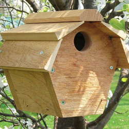 Songbird Essentials - Carolina Wren House All Purpose - Floor pivots down for easy cleaning. Hangs from a coated cable. 1/1/2 inch entrance hole.