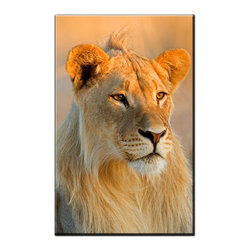 Vibrant Canvas Prints - Photo Canvas Prints, Framed Huge Canvas Print 5 Panel Forest Leaves Painting - This is a beautiful, 100% quality cotton canvas print. This print is perfect for any home or office, and will make any room shine with its addition of color and beauty.  - Modern Home and Office Interior Decor   Lion Canvas Designs - 1 Panel Print   Lion Face Print on Canvas - Wall Art - 30 Day Money Back Guarantee.