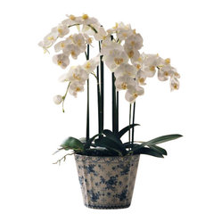 Winward - Phalaenopsis Orchid In Ceramic Flower Arrangement - The beauty of a bountiful Phalaenopsis orchid is undeniable, but the work it takes to keep one blooming can be a deal breaker. Give your brown thumb a break and treat yourself to a permanent version. Its dazzling presence will be a visual delight for years to come.