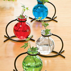 eclectic vases by Gardener's Supply Company