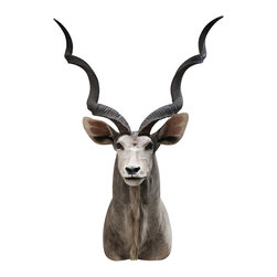 Walls Need Love - Stern Antelope, Adhesive Wall Decal - Does your wall need some love? The detailed, realistic wall decal projects power and grace. This contemporary and definitively eye-catching addition will spice up any room!