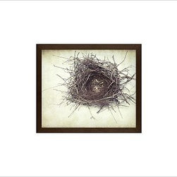 "Lupen Grainne Framed Print, Nest, No Mat, 11 x 13"", Espresso - This is an image of an abandoned nest the photographer found in an enormous passionflower vine. The photo is at once charming and haunting, conjuring up thoughts of flight and home. 13"" wide x 11"" high 20"" wide x 16"" high 42"" wide x 28"" high Alder wood frame. Black or white painted finish; or espresso stained finish. Beveled white mat is archival quality and acid-free. Available with or without a mat. {{link path='/shop/accessories-decor/pb-artist-gallery/artist-gallery-lupen-grainne/'}}Get to know Lupen Grainne.{{/link}}"