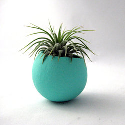 Single Air Plant Pod Blue By Sea & Asters - I love this planter. The modern shape and bright color are right up my alley.