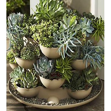 Patio / Porch Garden Planter with Cactus - Incredible indoor / outdoor stackable garden planter with a wheeled base. Just stack & grow. Grow herbs, flowers, house plants, cactus garden, more. Made in the USA. Durable, UV resistant material. 5 colors.