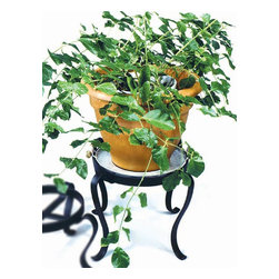 "Achla - Medium Wrought Iron Plant Stand in Black Powd - Display your flowerpots to their best advantage with this Medium Wrought Iron Plant Stand.  Crafted of iron and powdercoated in midnight black for long lasting beauty and durability.  Holds pots with bases up to 12"" wide 12"" off the ground.  Complete with curved, wrought iron legs, this medium height stand includes a rim to keep your plant where it belongs.  Made with quality craftsmanship and colored a soft black to add elegance and beauty to any room. * Made of Iron. Black Powdercoat finish. Tray not included. 12 in. Dia. x 12 in. H"