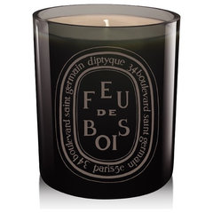 contemporary candles and candle holders by Diptyque Paris