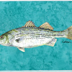 Caroline's Treasures - Fish Striped Bass Kitchen Or Bath Mat 24X36 - Kitchen / Bath Mat 24x36 - 24 inches by 36 inches. Permanently dyed and fade resistant. Great for the Kitchen, Bath, outside the hot tub or just in the door from the swimming pool.    Use a garden hose or power washer to chase the dirt off of the mat.  Do not scrub with a brush.  Use the Vacuum on floor setting.  Made in the USA.  Clean stain with a cleaner that does not produce suds.