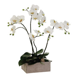 Silk Plants Direct - Silk Plants Direct Phalaenopsis Orchid Plant (Pack of 1) - Silk Plants Direct specializes in manufacturing, design and supply of the most life-like, premium quality artificial plants, trees, flowers, arrangements, topiaries and containers for home, office and commercial use. Our Phalaenopsis Orchid Plant includes the following: