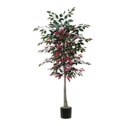 Vickerman - 6' Capensia Tree - 6' Capensia Tree in Black Plastic Pot and American made excelsior.