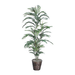 Vickerman - 6' Areca Palm Deluxe - 6' Areca Palm Deluxe in dark brown rattan basket with American made excelsior.