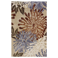 Contemporary Rugs by Pier 1 Imports