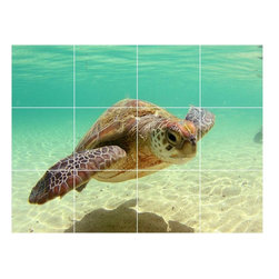 Picture-Tiles, LLC - Turtle Picture Bathroom Shower Tile Mural  18 x 24 - * Turtle Picture Bathroom Shower Tile Mural 1990