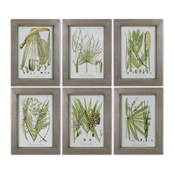 Uttermost - Palm Seeds Framed Prints, Set of 6 - Champagne silver leaf frames with medium green inner lips with a brown and gray wash.