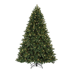 Alberta Spruce Christmas Tree - DECORATE YOUR HOME WITH OUR ALBERTA SPRUCE CHRISTMAS TREE