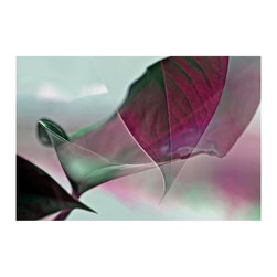 "Eiwy Ahlund ""Araceae 2"" Floating Photo Print - This ethereal double exposure print comes in rich hues of emerald and magenta. 1/4 inch thick museum grade archival acrylic was used to face mount this beautiful floating frame. All materials used are 100% archival museum grade."