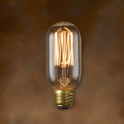 Bulbrite - 40-Watt Nostalgic Edison T14 Thread Filament - One pack of 10 Bulbs. Historic lamps add the ideal finishing touch of authenticity to fixtures. Nostalgic bulbs available in Chandelier and Edison-style. Great for chandeliers, sconces, and outdoor lighting. Wattages are not indicative of light output. Lamp Type: Incandescent. Color: Warm White. Color Temperature: 2100K. Non-Dimmable. Wattage: 40. Voltage: 120. AMPs: 0.33. Base: E26. Avg Hours: 3000. Lumens: 135. Equivalency: 40 Watts. Color Rendering Index (CRI): 100. Beam Spread: 360 degrees. Shape: T14. Maximum Overall Length (MOL): 17. 17 in. L x 4 in. W x 1.5 in. H (0.114 lbs.)Bulbrite has extended their line of Nostalgic light bulbs to provide more options in vintage filaments, bulb shapes, and wattages.