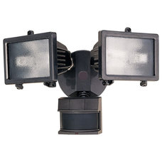 Traditional Outdoor Flood And Spot Lights by Lamps Plus
