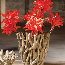 Home Decorators Collection - Driftwood Planter - Our Driftwood Planter makes a striking impression, either displayed on its own or holding an arrangement of faux flowers. The open design offers visual intrigue for your tabletop decor. This lovely piece is handcrafted from pieces of driftwood found on the beach. Handmade of natural driftwood. Open design does not include interior liner or pot. Made in the Philippines. Due to the natural materials and construction, each item is unique.