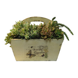 Mixed Succulent Arrangement in Wooden Garden Vase - Robert-Lawrence Designs provides the interior design community with high quality silk and dried floral arrangements, artificial plants and custom-made trees. In addition, they offer a tremendous assortment of related accessories and containers to suit any aesthetic.