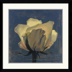 Amanti Art - Glowing White Rose Framed Print by Curtis Parker - The many shades of cream and white create a subtle and refined feeling of nature's beauty. This piece is the perfect compliment to Glowing Magnolia by Curtis Parker.