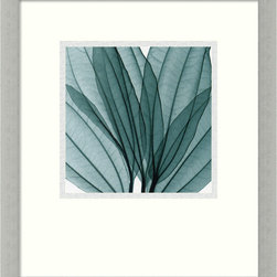 "Amanti Art - ""Leaf Bouquet"" Framed Print by Steven N. Meyers - Much more permanent than flowers, let this unique leaf bouquet print by Steven Meyers grace your home. By using x-ray technology, each shadow and detail of the leaves are intimately revealed. The print's cool green tones and black outlines are enhanced by a sliver-leaf and black frame."