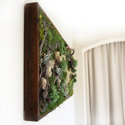 """Artisan Moss Plant Painting - Our handcrafted """"plant paintings"""" are zero maintenance green walls that are remarkably light-weight, utilizing all real preserved plants."""