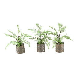D&W Silks - D&W Silks Set Of 3 - Lace Fern And Lichen Spray In Ceramic Planter - Set of 3 - Lace fern and lichen spray in ceramic planter