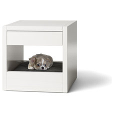 Contemporary Pet Supplies by Binq Design