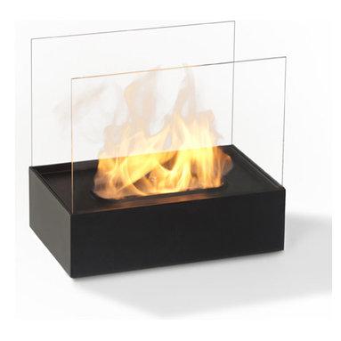 Bio-insert for Fireplace -