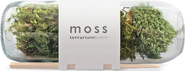 Terrariums by Eartheasy
