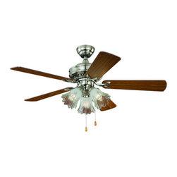 "Vaxcel Lighting - Vaxcel Lighting F0010 Orchard 44"" 5 Blade Indoor Ceiling Fan with Reversible Mot - Features:"