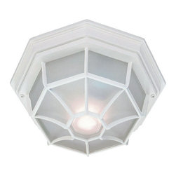 """Acclaim Lighting - Acclaim Lighting 2002 2 Light 11"""" Width Outdoor Flushmount Ceiling Fixture - Acclaim Lighting 2002 Two Light 11"""" Width Outdoor Flushmount Ceiling FixtureVersatile outdoor flush mount ceiling fixture has a simple style that will blend well with any d�cor.Acclaim Lighting 2002 Features:"""
