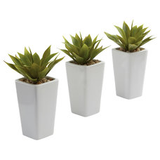 Traditional Indoor Pots And Planters by Beyond Stores