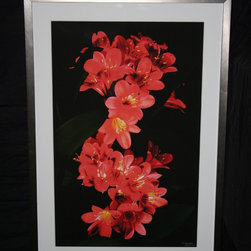 Accetra Arts Ltd - Camilla Flowers by Silverman. Original Photograph - Original Framed Photograph by world reknowned Photographer, Harold Silverman. Framed with White Acid Free Mat and Silver Gallery Frame.