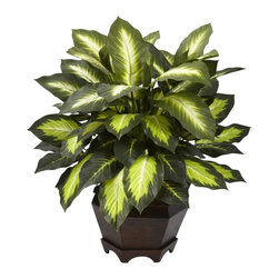Triple Golden Dieffenbachia with Wood Vase - This wondrous Golden Leaf Dieffenbachia is sure to bring warmth and cheeriness to any room it graces. Standing slightly over 20 inches high, it's compact enough to fit on your desk or any small space that needs some sprucing up. Crisp brightly colored leaf centers surrounded by a deep green outline add a nice distinguishing touch. Nestled in a warm traditional wooden vase, this authentic looking Dieffenbachia silk plant will bring you years of maintenance free pleasure. Height= 22 In. x Width= 20 In. x Depth= 18 In.