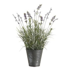 17.7 InchHx5 InchD Lavender in Tin Pot in Re-Shippable Box Lavender - Beautiful forever blossoms artfully arranged and ready to brighten up your favorite space. We are the largest silk flower wholesaler / importer in the Southeast for 22 years. We import directly to provide you with the best prices. We carry thousands of items in stock in addition to silk flowers, including artificial trees and greenery.