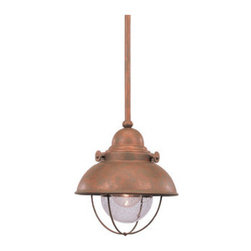 Transitional Down Lighting Pendant - Pendant lights look great over eat-in bar areas or work spaces like the home office. These pendants have a clear seeded glass and a finish that will be a wonderful addition to function to any room.
