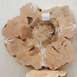 Big Leaf Maple Burl Tabletop 2235x1 - BIG LEAF MAPLE (acer macrophyllum)