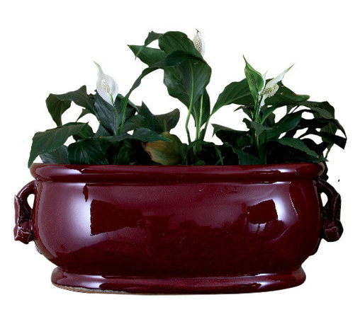 Oriental Danny - Porcelain red oxblood oval planter - Classic red oxblood porcelain oval planter with pomegranate handles. Great for centerpiece.