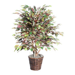 Vickerman - 4' Mystic Ficus Extra Full - 4' Mystic Ficus Extra Full Bush on three or more Dragonwood trunks. Dark brown Rattan container. American made excelsior