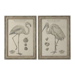 Uttermost - Uttermost Natural History Framed Art, Set of 2 - 51077 - -Uttermost's bird art combines premium quality materials with unique high-style design.