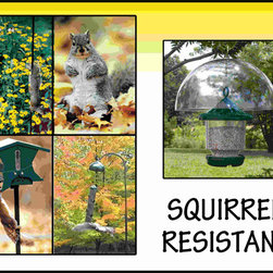 Songbird Essentials - Squirrel Resistant Sign - Enjoy the ability to change layout in your store easily as seasons and specific birds change. Enhance your store's image with stunning bird signage and promote sales! Get any group of bird-feeding individuals together and squirrel stories will soon come u