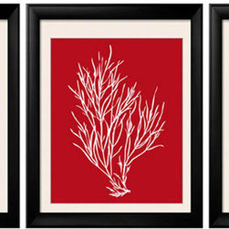 Red White Artwork, Tropical Wall Art, Red Coral, Red Coral Prints - Three 8x10 archival quality prints of antique sea coral, seaweed and sea kelp. Two of the prints are red coral on white background, and one print is a white coral silhouette on a matching deep red background.