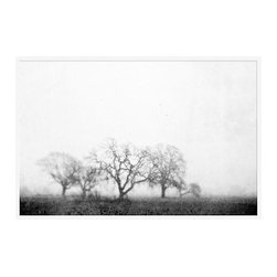 """Lupen Grainne Framed Print, Black & White Fog and Trees, No Mat, 28 x 42"""", White - The unity and diversity of an oak tree's bare winter branches stand in stark relief against a wide foggy sky. A study in natural patterns, the distant trees take on the look of coral, as multifaceted as snowflakes. 13"""" wide x 11"""" high 20"""" wide x 16"""" high 42"""" wide x 28"""" high Alder wood frame. Black or white painted finish; or espresso stained finish. Beveled white mat is archival quality and acid-free. Available with or without a mat.{{link path='shop/accessories-decor/pb-artist-gallery/artist-gallery-lupen-grainne/'}}Get to know Lupen Grainne.{{/link}}"""