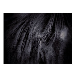 Studio D&K - Horse Art on Canvas • Large Wall Art, 18x24 - Horse Art on Gallery Wrapped Canvas