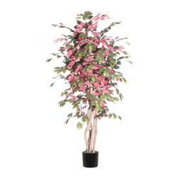 Vickerman - 6' Capensia Executive - 6' Capensia Executive Tree in Black Plastic Pot