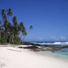 Travel takeaways: Design Inspirations from Samoa