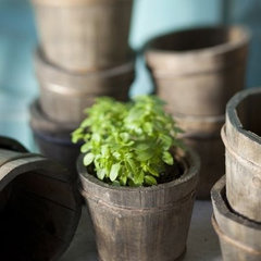 traditional outdoor planters by Mothology